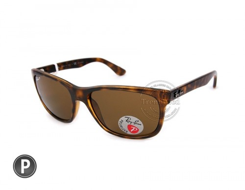 RAYBAN Polarize Sunglasses for men model RB4181 color 710/83