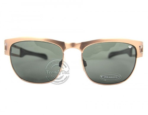 RAYBAN UNISEX Sunglasses model 2447 color 1160